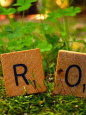 scrabble letters on a grass field spelling out grow