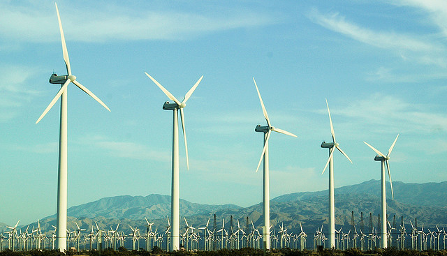 lots of wind turbines in a field