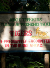 jungle tiger warning sign in the jungle
