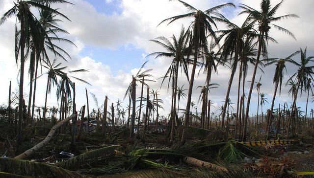 typhoon wreckage
