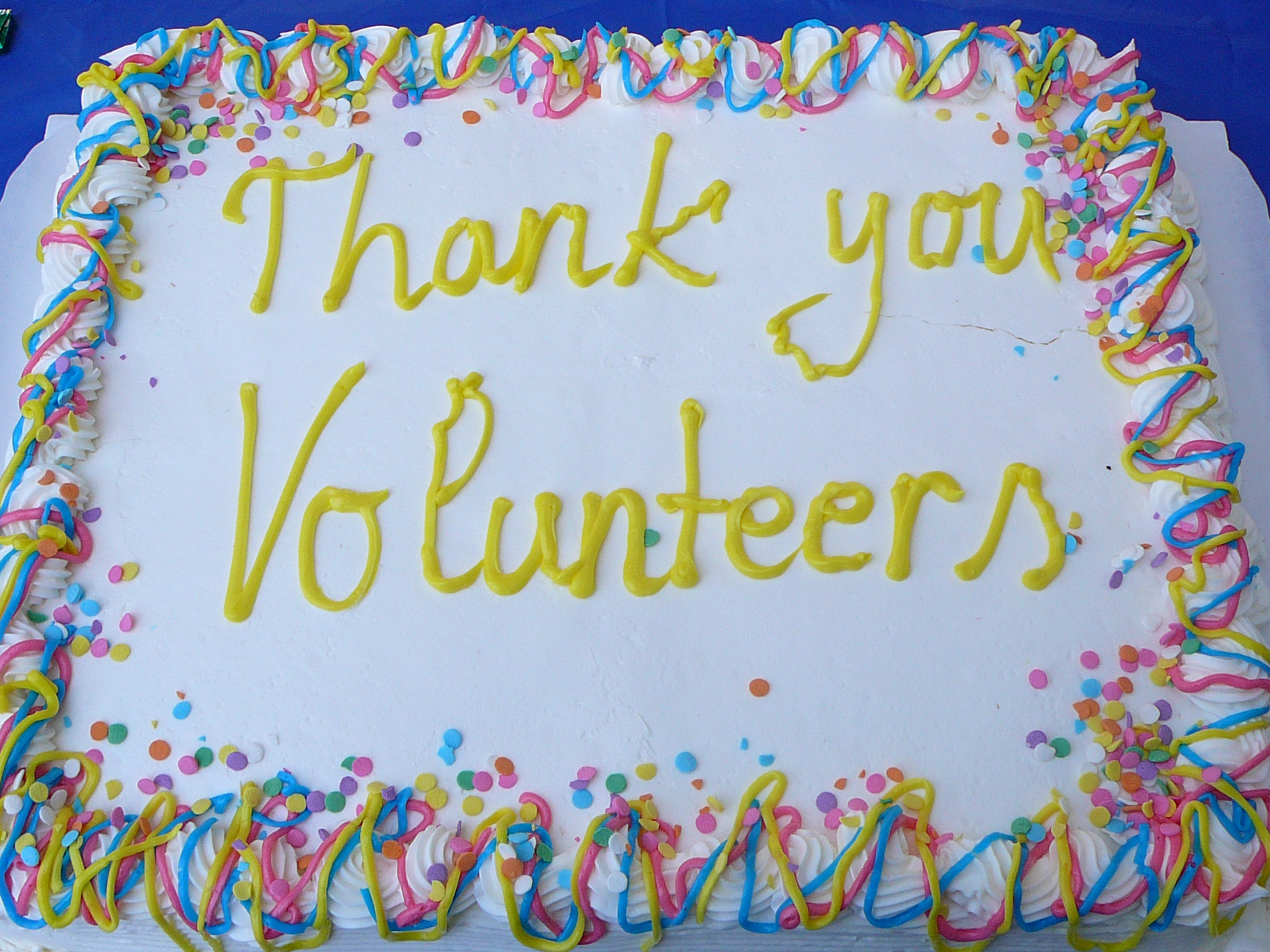 colorful cake saying thank you to volunteers