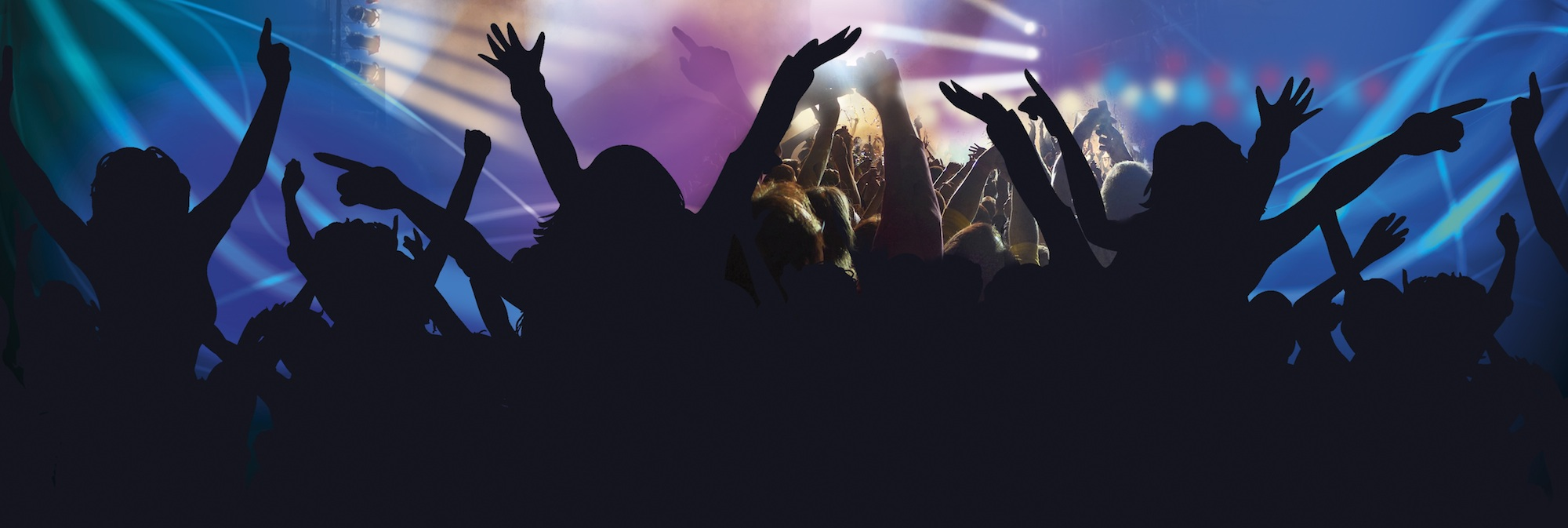 group of fans partying at a concert or event