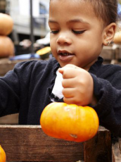 a little boy picking out a small orange pumpkin from a wood bin