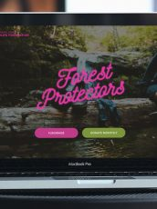 forest protectors fundraising campaign open on a laptop