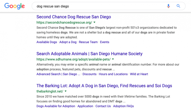 google results for dog rescue