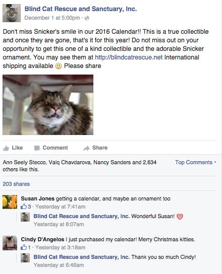 Blind cat rescue facebook example