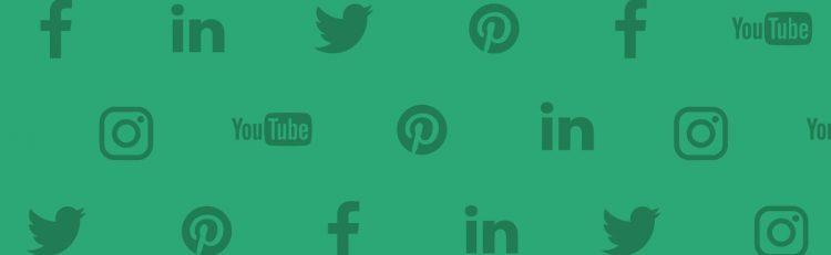 social media demographics infographic