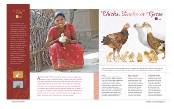 Heifer International giving catalogue