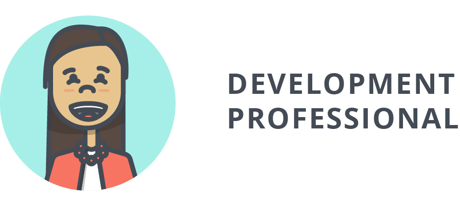 Development Professional