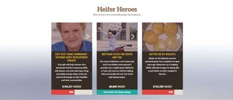 Heifer International Classy API use