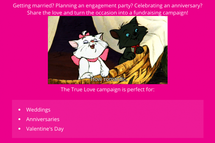 True Love landing page text