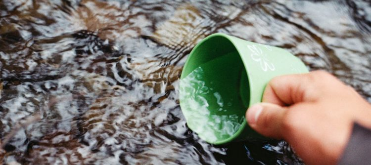 clean water cup
