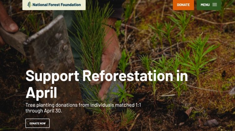 national-forest-foundation-environmental-sustainability