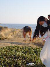 Classy sustainability program beach cleanup