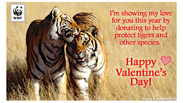 World Wildlife Foundation ecard.
