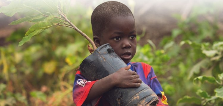 Child holding a tree that will be planted through Trees.org's conservation program.